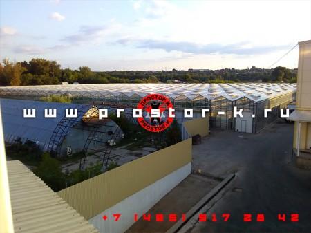 Запуск упаковочного станка для зелени в Лыткарино
