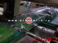 Запуск оборудования для упаковки зелени в г.Самара